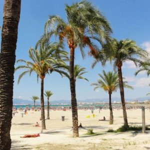 Palma_spagna_el_arenal_estate_altieri_viaggi_matera